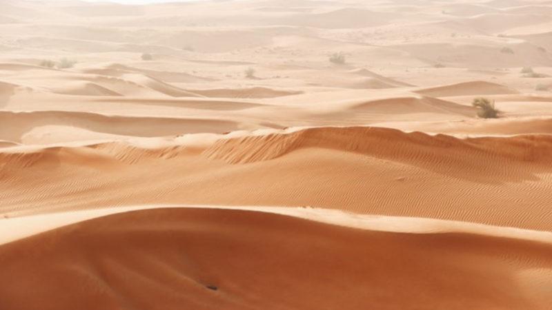 Informez-vous avec Opener 24 sur la météo à Dubaï en juillet et envolez-vous dès maintenant !