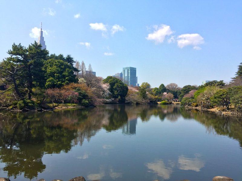 les meilleures destinations pour le mois d'avril, où partir, où partir en avril, partir au japon