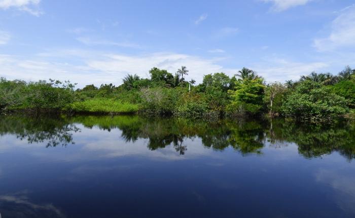 les meilleures destinations pour le mois de septembre, où partir, où partir en septembre, partir en septembre en amazonie