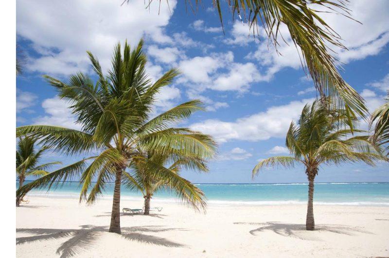 belle plage caraibes karibo punta cana